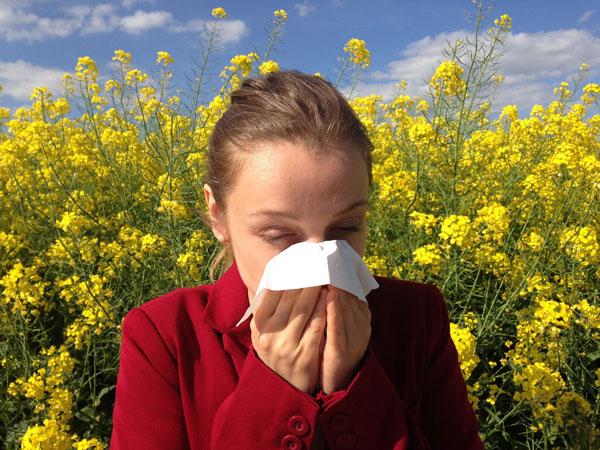 farmaci antistaminici: rinite allergica e raffreddore da fieno