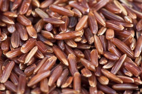 proprietà del riso rosso