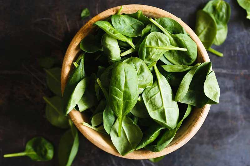 calorie del basilico